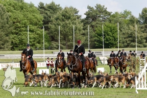 Fontainebleau 2017 0007
