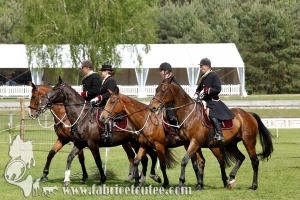 Fontainebleau 2017 0014