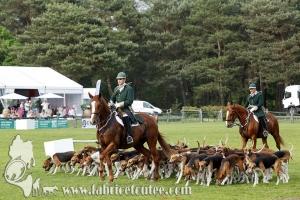 Fontainebleau 2017 0071