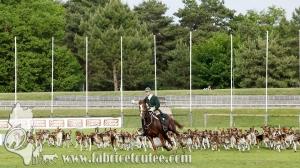 Fontainebleau 2017 0100