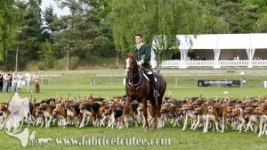 Fontainebleau 2017 0114