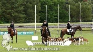 Fontainebleau 2018 0014