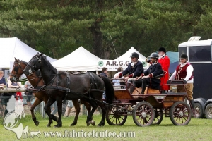 Fontainebleau 2018 0127