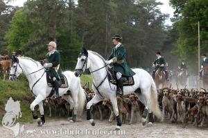 Fontainebleau-2019-0003